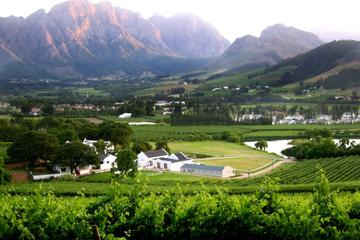 franschhoek-cape-fold-mountain-hike-from-cape-town-in-cape-town-238578